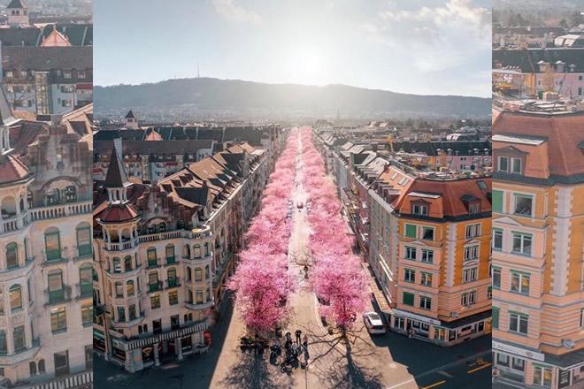 Zurigo. Foto da Ufficio Stampa